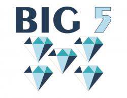 Big Five Diamond Polisher